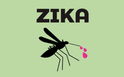 RACING TO A ZIKA VACCINE